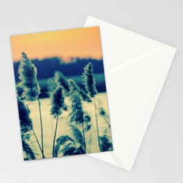 Sunset on the Marsh with Grasses Movement Nature Landscape Photo Stationery Cards