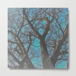 Whispy Tree Metal Print