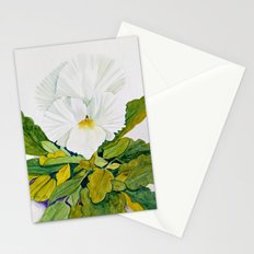 White Pansy Stationery Cards