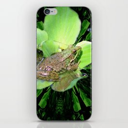The Frog iPhone Skin