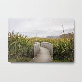 Grassy Pathway- New Zealand Metal Print