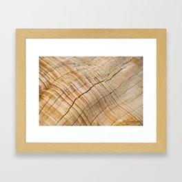 Weathered Wood Grain Framed Art Print