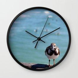 Grumpy Bird Wall Clock