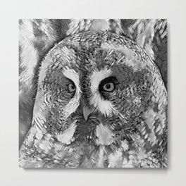 AnimalArtBW_Owl_20170601_by_JAMColorsSpecial Metal Print