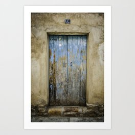 Old Door Art Print