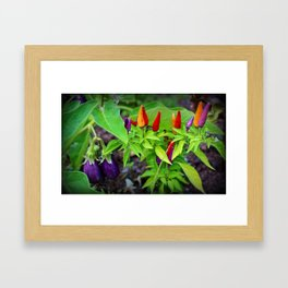 Colorful Peppers Framed Art Print