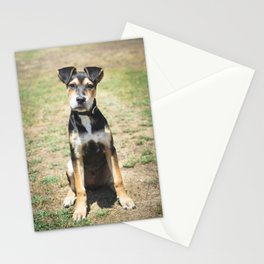 Cute Puppy Stationery Cards