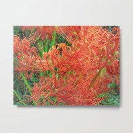 Secret Garden | Red Spider Lily Metal Print