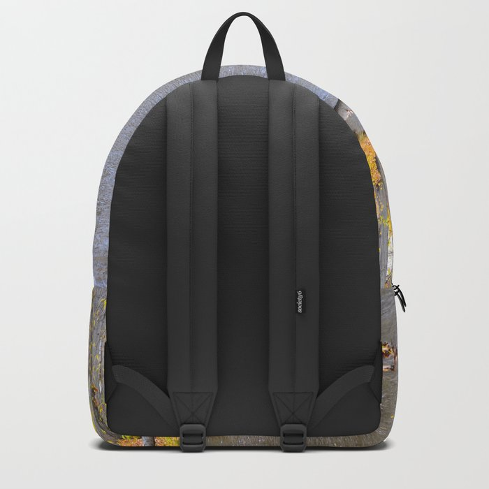 Autumn Stream II Backpack