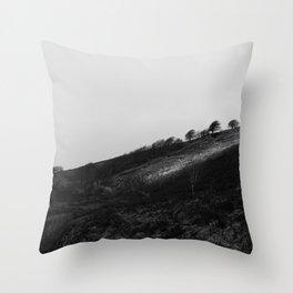 Exmoor II Throw Pillow