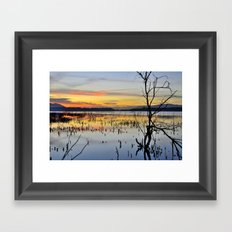 Lonely tree at the lake Framed Art Print
