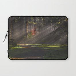Silver Falls Historic District Laptop Sleeve