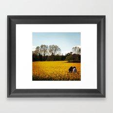 yellow field Framed Art Print