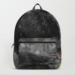 Black fox cub portrait Backpack