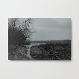 Mosquito Lake  Metal Print