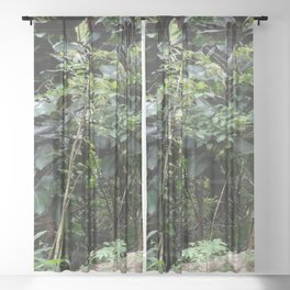 Tropical Rainforest 04 Sheer Curtain