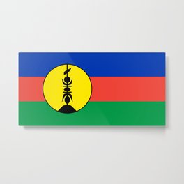 New Caledonia flag Metal Print