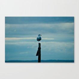 _= Canvas Print