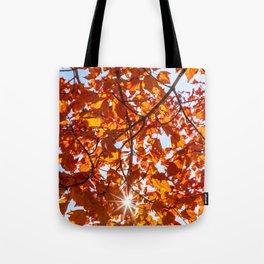 Fall Maple Tote Bag
