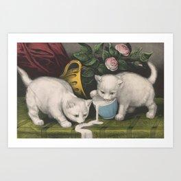 cute kitten 3- Anonymous - Little white kitties -pet,whikers,cat,kitty,kitten Art Print