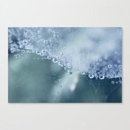 Dewdrops collection #1 Canvas Print