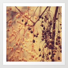 Autumn Life (II) Art Print