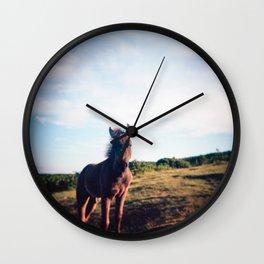 Dartmoor Pony Portrait (3) Wall Clock