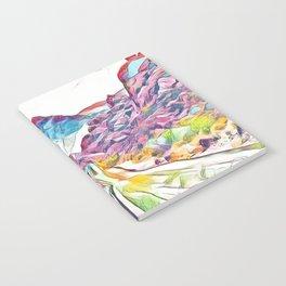 Rainbow Road Notebook