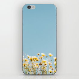 Daisies in the Sky iPhone Skin