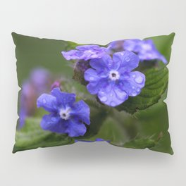 Omphalodes verna - JUSTART © Pillow Sham