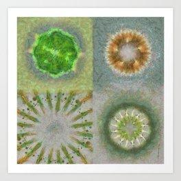 Bashing Image Flower  ID:16165-033432-38660 Art Print