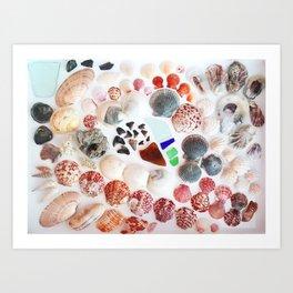 Shark Teeth and Sea Glass Art Print
