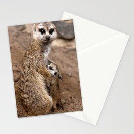 Meerkats   Erdmännchen Stationery Cards