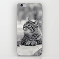 Look at That iPhone & iPod Skin