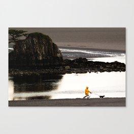 Rainy Beach Dogwalk Canvas Print