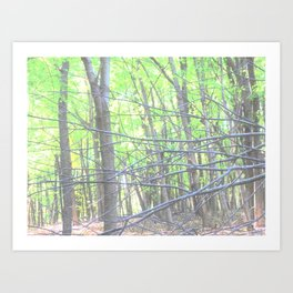 Branch Out Art Print