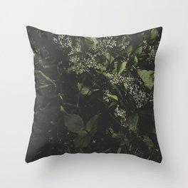 [ - ] Sham Chung Throw Pillow