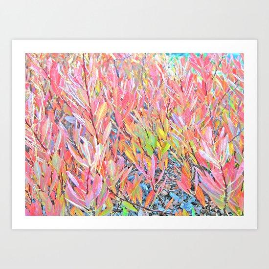 Autumn Pastels Art Print