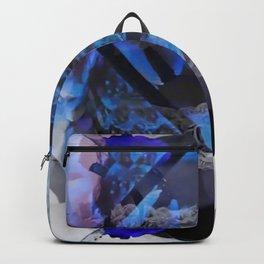 Palone  Backpack