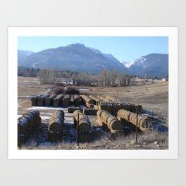 #406 bitterroot montana turds Art Print