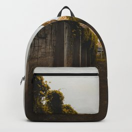 The Owl (Color) Backpack