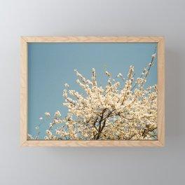 Pear Tree (Two) Framed Mini Art Print
