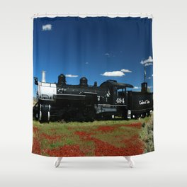 Cumbres And Toltec Engine 494 Shower Curtain