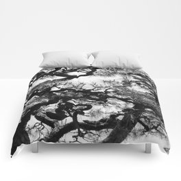 Tree of Japan (black and white edit) Comforters