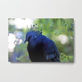 A bird in the Toronto Zoo Metal Print