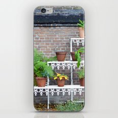 Pots and plants iPhone & iPod Skin