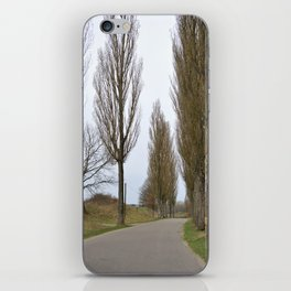 road and trees 1 colour iPhone Skin