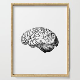 Brain Anatomy Serving Tray
