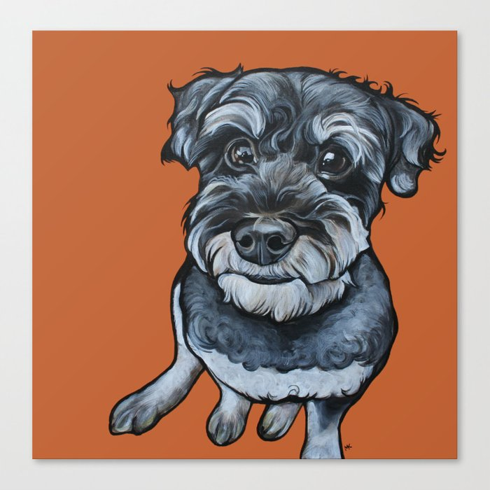 Frankie the Schnoodle Canvas Print