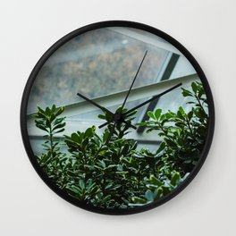Botanical Conservatory Wall Clock